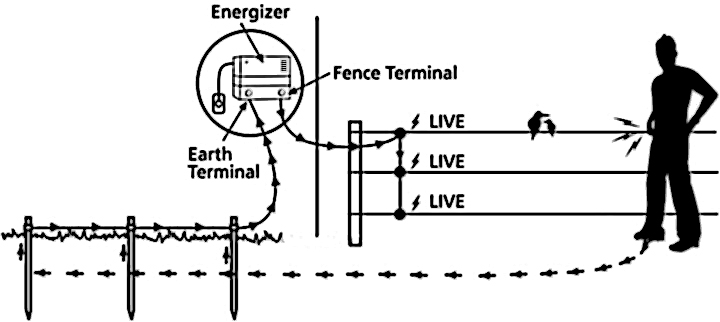 diagram  key largo live well wiring diagrams full version hd quality wiring diagrams